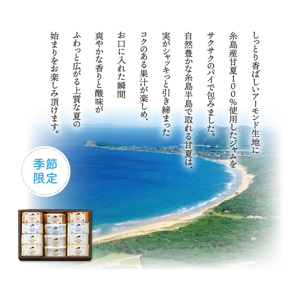 なんばん往来 糸島産甘夏1